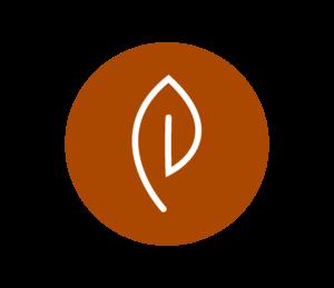 Ekokampaamo Havu - Kasvivärjäykset