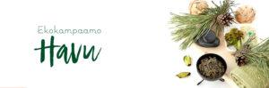 Ekokampaamo Havu logo